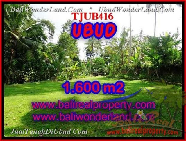Beautiful PROPERTY 1,600 m2 LAND IN Sentral Ubud FOR SALE TJUB416