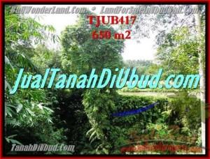 Beautiful PROPERTY UBUD LAND FOR SALE TJUB417