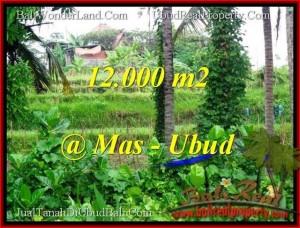FOR SALE Magnificent LAND IN Sentral Ubud BALI TJUB492