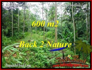 Exotic PROPERTY LAND IN UBUD FOR SALE TJUB493