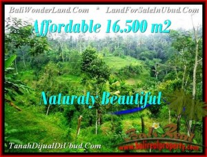 Exotic PROPERTY LAND IN UBUD FOR SALE TJUB494