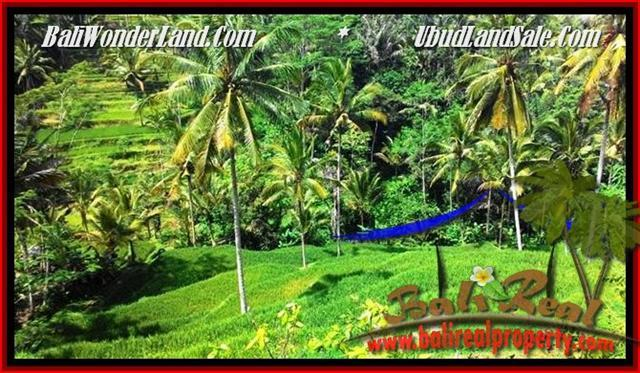 Exotic PROPERTY LAND IN UBUD FOR SALE TJUB496