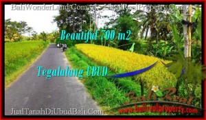Magnificent UBUD BALI 700 m2 LAND FOR SALE TJUB497