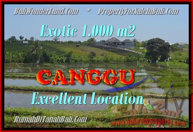 FOR SALE Magnificent LAND IN Canggu Kayutulang BALI TJCG168