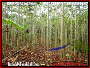 Beautiful LAND FOR SALE IN TABANAN TJTB159