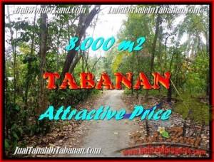 Beautiful PROPERTY Tabanan Selemadeg 8,000 m2 LAND FOR SALE TJTB161