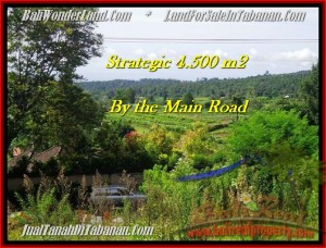 Exotic 4,500 m2 LAND SALE IN TABANAN BALI TJTB193