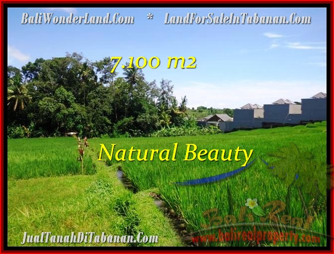 Magnificent 7,100 m2 LAND SALE IN TABANAN BALI TJTB197