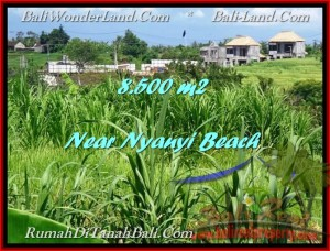 8,500 m2 LAND FOR SALE IN TABANAN BALI TJTB198