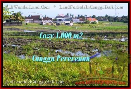 FOR SALE Magnificent PROPERTY 1,000 m2 LAND IN CANGGU BALI TJCG177