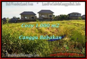 FOR SALE Magnificent PROPERTY 1,000 m2 LAND IN CANGGU TJCG178