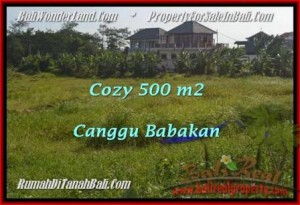 FOR SALE Magnificent PROPERTY 500 m2 LAND IN CANGGU TJCG179
