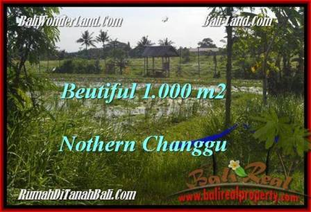 FOR SALE Magnificent PROPERTY 1,000 m2 LAND IN CANGGU TJCG180