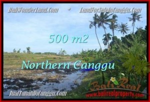 Beautiful PROPERTY LAND SALE IN Canggu Pererenan BALI TJCG181