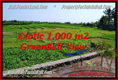FOR SALE 1,000 m2 LAND IN Canggu Pererenan BALI TJCG184