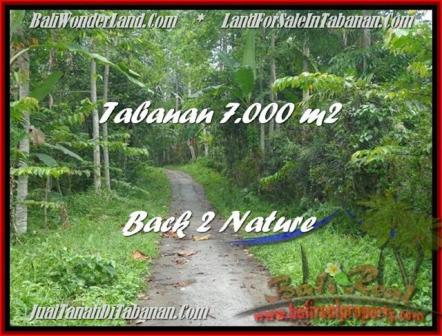 Affordable PROPERTY LAND IN TABANAN FOR SALE TJTB176