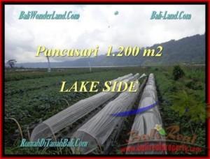 Affordable PROPERTY LAND IN TABANAN FOR SALE TJTB178