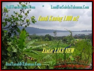 Magnificent PROPERTY LAND SALE IN TABANAN TJTB179
