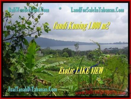 Beautiful LAND FOR SALE IN TABANAN TJTB179