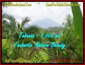 Exotic PROPERTY TABANAN LAND FOR SALE TJTB182