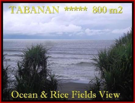 Affordable PROPERTY LAND IN TABANAN FOR SALE TJTB183