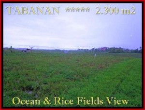 Exotic PROPERTY TABANAN LAND FOR SALE TJTB184