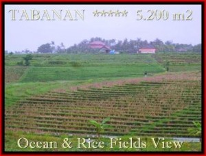 Exotic PROPERTY TABANAN LAND FOR SALE TJTB185