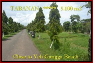 Exotic PROPERTY TABANAN LAND FOR SALE TJTB186