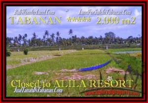 FOR SALE Exotic LAND IN Tabanan yeh Gangga BALI TJTB187