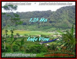 Exotic PROPERTY Tabanan Bedugul 12,500 m2 LAND FOR SALE TJTB188