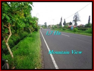Beautiful 17,000 m2 LAND FOR SALE IN Tabanan Bedugul TJTB191