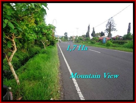 Affordable TABANAN BALI 17,000 m2 LAND FOR SALE TJTB191