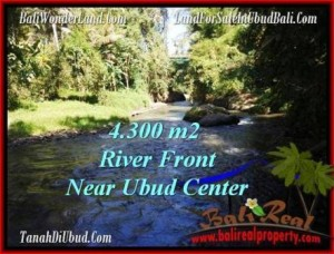 FOR SALE Affordable PROPERTY 4,315 m2 LAND IN UBUD BALI TJUB499