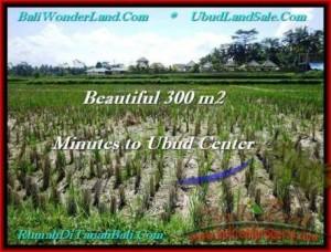 Exotic 300 m2 LAND IN UBUD BALI FOR SALE TJUB500