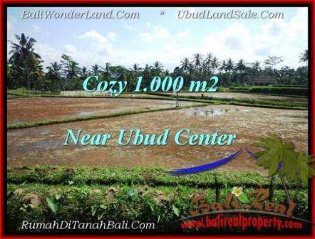 Affordable 1,000 m2 LAND FOR SALE IN UBUD BALI TJUB501