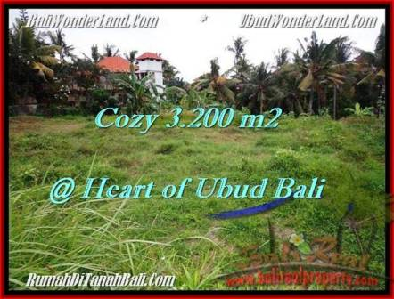 Affordable PROPERTY 3,200 m2 LAND SALE IN UBUD BALI TJUB510