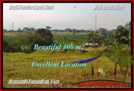Magnificent LAND SALE IN Canggu Brawa TJCG185