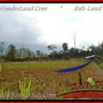 FOR SALE Magnificent PROPERTY LAND IN TABANAN TJTB163