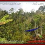 Affordable TABANAN BALI 20,000 m2 LAND FOR SALE TJTB163