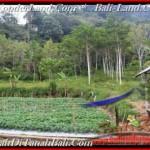 Affordable PROPERTY TABANAN LAND FOR SALE TJTB164