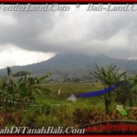 Exotic PROPERTY LAND SALE IN TABANAN TJTB164