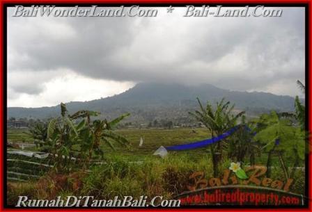 Beautiful PROPERTY 52,000 m2 LAND SALE IN Pancasari TJTB164