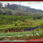 FOR SALE Magnificent PROPERTY LAND IN TABANAN TJTB164