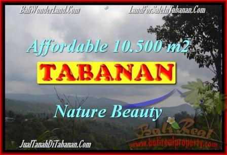 Beautiful PROPERTY 10,500 m2 LAND SALE IN Sukasada TJTB165