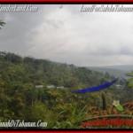 Exotic PROPERTY LAND SALE IN TABANAN TJTB165
