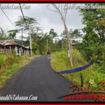 Beautiful PROPERTY LAND FOR SALE IN TABANAN BALI TJTB165