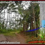 FOR SALE Affordable LAND IN Sukasada BALI TJTB166