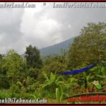 Magnificent LAND FOR SALE IN TABANAN TJTB166