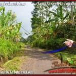 Beautiful LAND IN TABANAN FOR SALE TJTB166