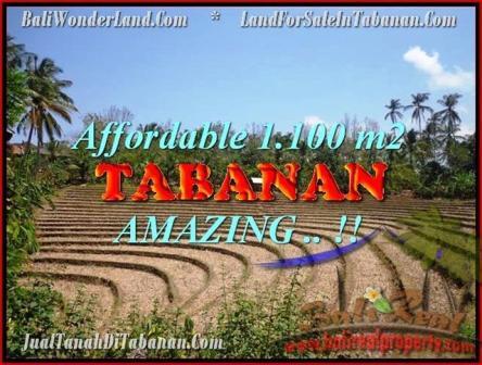 Exotic PROPERTY 1.100 m2 LAND IN Tabanan Selemadeg FOR SALE TJTB170